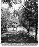 Arboretum, Putah Creek