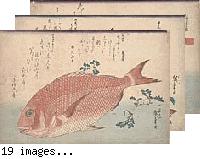 Uo-zukushi