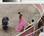 A toureiro (matador) engages a bull in a bloodless bullfight near Escalon, California, July 2, 1989.