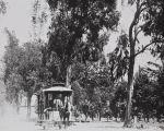 B.F. Conaway photograph of horse-drawn streetcar in Tustin