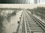 Photograph of a flooding river near Turlock, California, circa 1929.