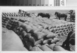 Stacks of Barley