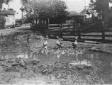 Photograph of the duck pond at the Hauschildt Ranch