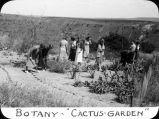 Botany - Cactus Garden / Lee Passmore