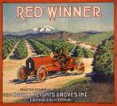 Red Winner label