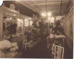 Cawston Ostrich Farm Boutique Interior