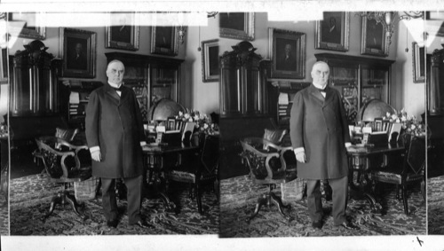 William McKinley, The Nationu0027s President In The Cabinet Room Of The White  House Washington.