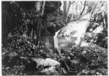 Diversion small streams to Balch Tunnel