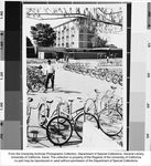 Memorial Union, bicycles outside