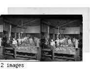 Making Sausage, Swift & Co., Chicago, Ill.