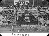 Rooters / Lee Passmore