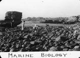 Marine biology / Lee Passmore
