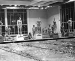 Senior and age group swimmers working-out