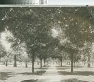 Cortez Square