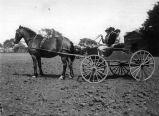 Horse and buggy ride # 2, (early 1900s), photograph