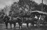 Photograph of horse-drawn carriage with high school students.