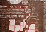 Beaumont Real Estate, plums.