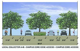 Local Collector A+B - Campus Core Edge Access and Campus Core Access