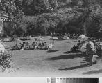 Outdoor Gathering At Villa Montalvo