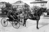 William M. Fallon (1855-1911) and Frank Faro riding in a horse-drawn buggy, (c.1890s) photograph
