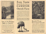 """Cawston Ostrich Farm Pamphlet: """"Only One"""" (Interior)"""