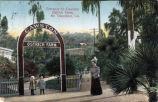 """Cawston Ostrich Farm Postcard: """"Entrance to Cawston Ostrich Farm"""""""