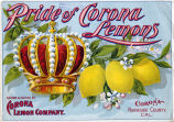"Crate label, ""Pride of Corona Lemons."" Grown and Packed by Corona Lemon Co., Corona, Riverside Co., Calif."