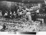 Mechanized melon packing in Turlock, California, circa 1945.