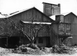 Taniguchi Apple Dryer, Sebastopol, California
