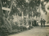 [Photograph of East Shore Park strollers]