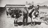 Don Diego Guiterrez : Santa Barbara Mission : 1887.