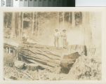Little River Redwood Co., Crannell Cal. [promotional photograph with loggers standing on redwood log holding peeling bars]