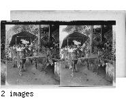 Burmese Girls off for a Picnic in a Buffalo Cart, Mopoon, Burma