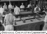Organic chemistry laboratory / Lee Passmore