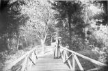 Photograph of a bridge at Mills College
