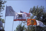 [1984 Olympics Cycling Road Race flags slide].
