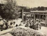 Registration lines, Saratoga campus
