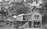 Cottages, Bodega Bay, California