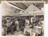 Cawston Ostrich Farm Processing Room