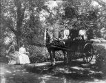 Photograph of horse cart at Mills College