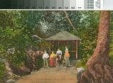 Postcard of the Spring House, Congress Springs, Santa Clara Valley