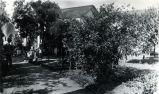 Edge of Nimock's garden with fan trellises