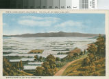 Postcard of Santa Clara Valley At Blossom Time
