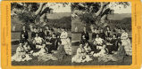 Eadweard Muybridge stereoscopic photograph of faculty at Mills College