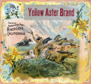 """Crate label, """"Yellow Aster Brand."""" Packed by Sandilands Bros. Riverside, Calif."""