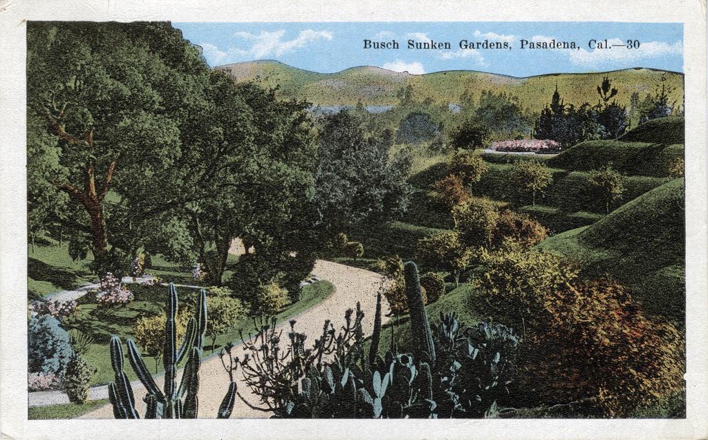 Title: Postcard: Busch Gardens, Pasadena, California